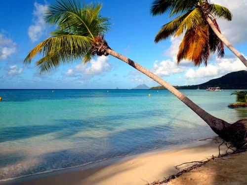 Météo mai Martinique