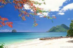 Meilleure saison pour venir en Martinique